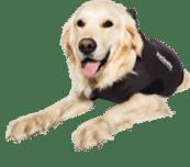 Jacketz Medical Body Suit hond - Jacketz Medical Body Suit hond S