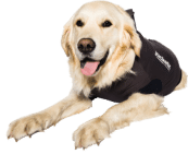 Jacketz Medical Body Suit hond - Jacketz Medical Body Suit hond M