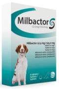 Milbactor grote hond 4 tabletten