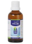 Puur Pollen