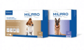 Milpro Hond