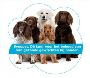 synopet hond